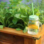 Drewniana donica – przygotowanie pod zioła i kwiaty