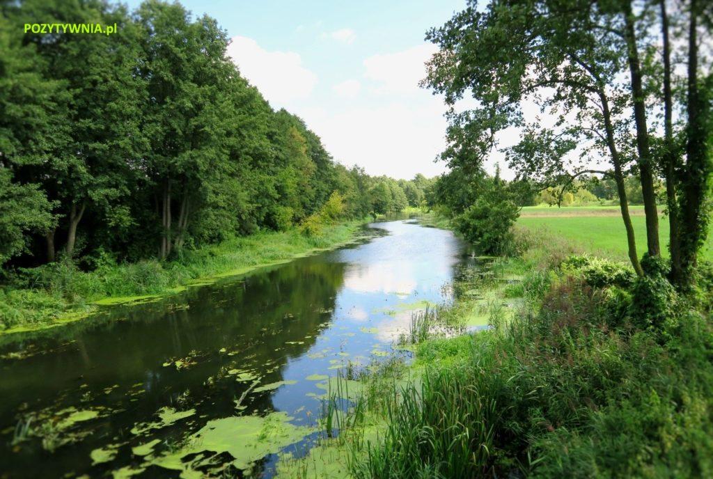 rzeka3