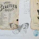 Ćmy i motyle w bibliotece